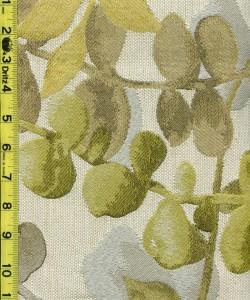 Floral Fruit Leaves 6/25/15