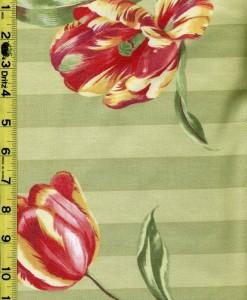Floral Fruit Leaves 11/20/15